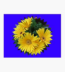 Yellow Daisies Vignette Photographic Print