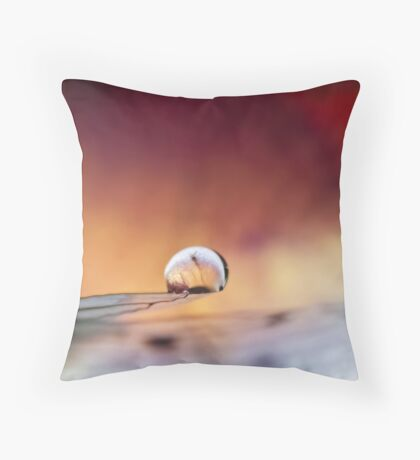Poised on Angel's Wing Throw Pillow