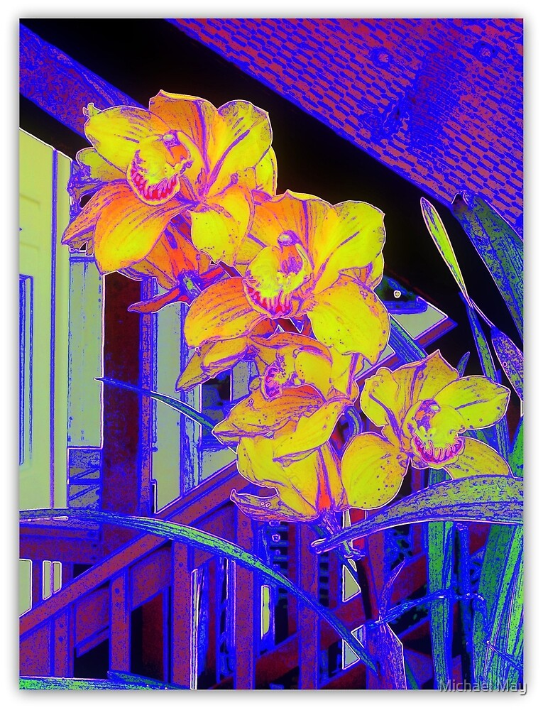 Orchids On A Gray Day by Michael May