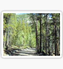 Winding Rural Road Sticker