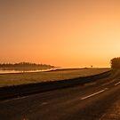 The Estuary Road by Martina Fagan