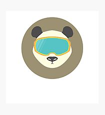 Panda bear with ski mask. Photographic Print