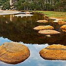 0557 Stepping Stones by DavidsArt