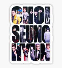Choi Seung Hyun Sticker
