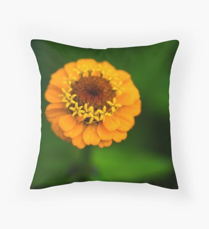 Orange and Green - Beautiful Together Throw Pillow
