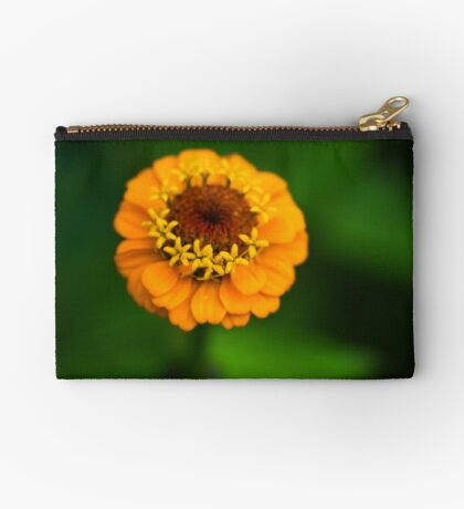 Orange and Green - Beautiful Together Studio Pouch