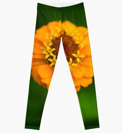 Orange and Green - Beautiful Together Leggings