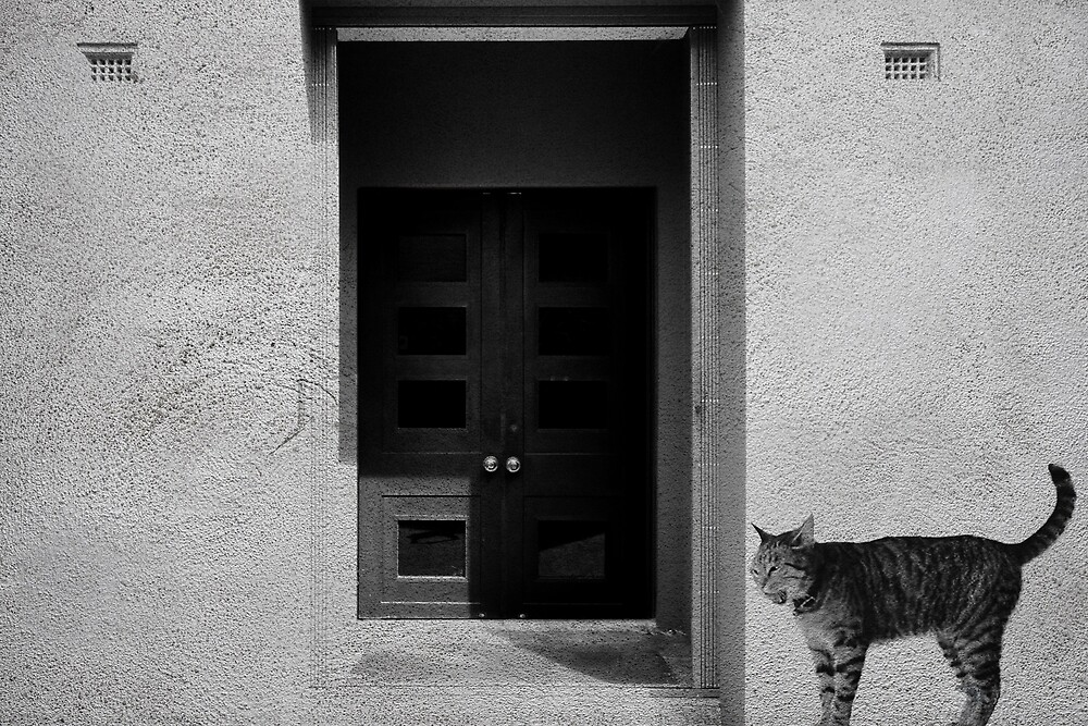 cat in front of the door by Aika-G