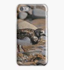 LOOKING FOR FOOD iPhone Case/Skin