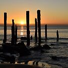 The Sticks at Port Willunga South Australia by Candy Jubb