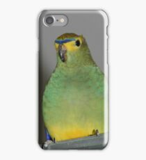 Blue-winged Parrot iPhone Case/Skin