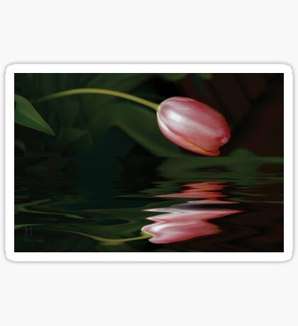 Tulip Reflections Sticker
