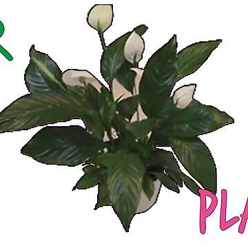 DURR PLANT by CM7Designs