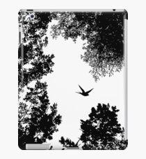 Nachtflug iPad-Hülle & Klebefolie