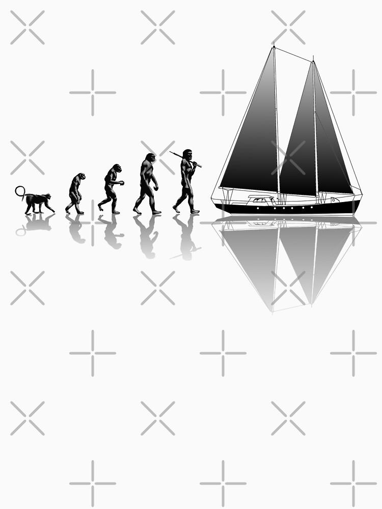 Image result for sailboat evolution