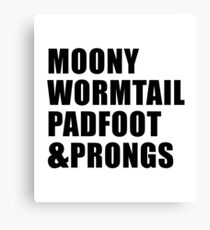Moony, Wormtail, Padfoot & Prongs Canvas Print
