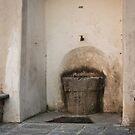 Welcome to the watering place. by Karen Havenaar