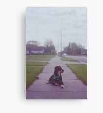 'Sidewalk' Canvas Print