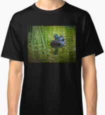Young mallard drake Classic T-Shirt