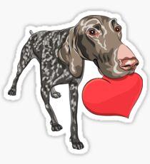 Pegatina Kurzhaar con corazón rojo