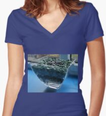 Blue Window Display Women's Fitted V-Neck T-Shirt