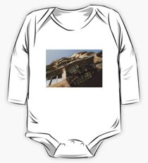 Wrought Iron, Glass and Stone Plus a Genius Imagination One Piece - Long Sleeve