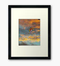 ho-oh Framed Print
