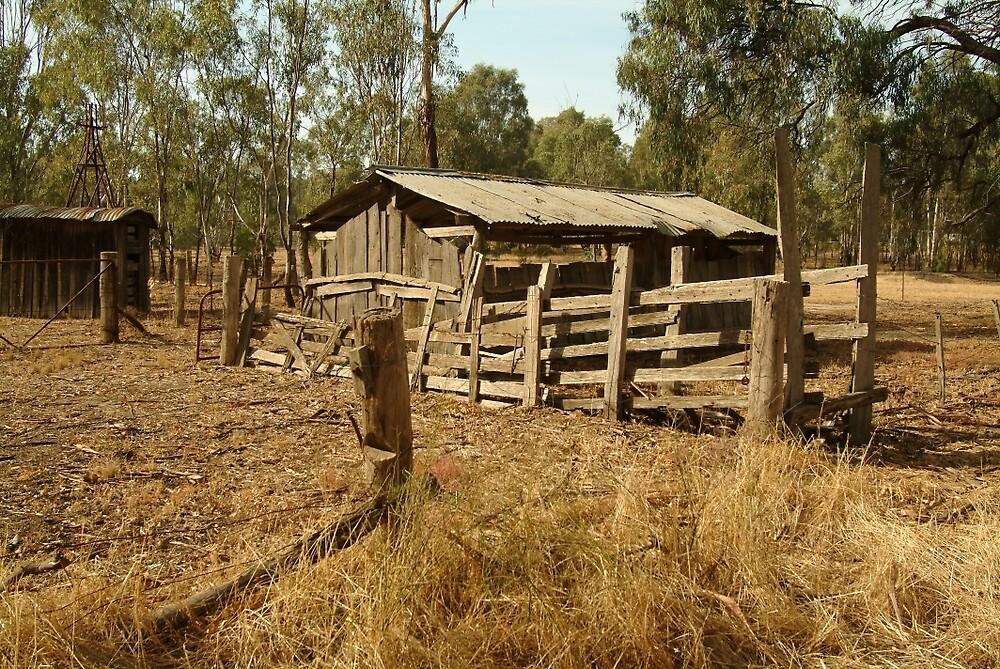 Joe Mortelliti Gallery - Old cattle yard, Echuca, Murray River, Victoria, Australia. by thisisaustralia