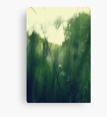 Grassland - one Canvas Print
