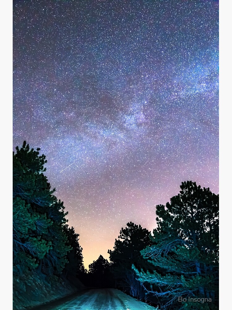 Forest Night Light by mrbo