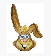 Hase / rabbit Fotodruck