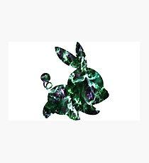 Tepig Green Galaxy Photographic Print