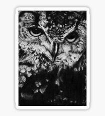 Owl drawing photorealistic Sticker