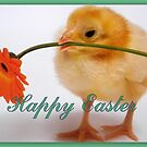 Happy Easter Chick  by ©The Creative  Minds