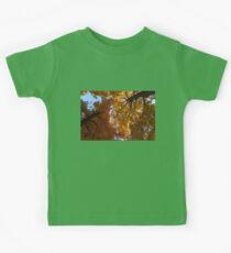 A Vibrant Autumn Duet Kids Clothes