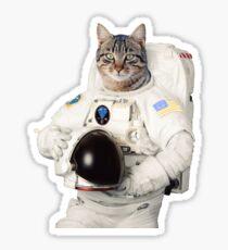 ASTRO CAT GLOBAL CITIZEN Sticker