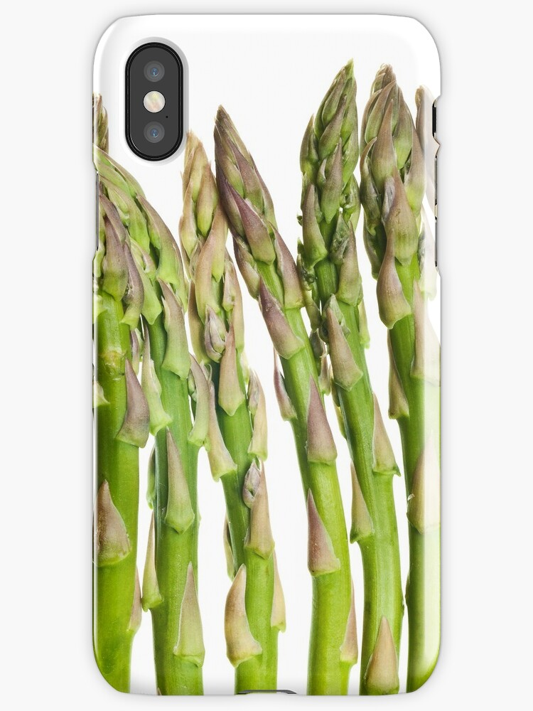 Asparagus Isolated On White Background by SilverSpiral