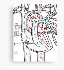Bloodflow Chart Canvas Print