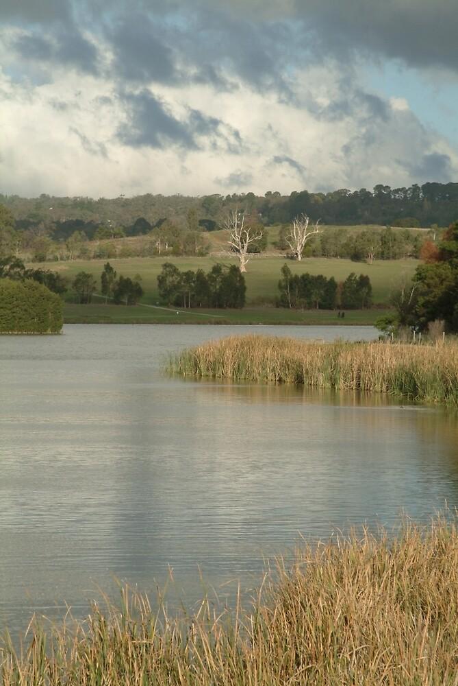 Joe Mortelliti Gallery - Cloud break at Lilydale Lakes, Melbourne, Victoria, Australia. by thisisaustralia