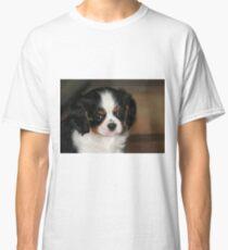 Rupert Classic T-Shirt