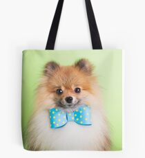 Cute Pomeranian with a ribbon Tote Bag