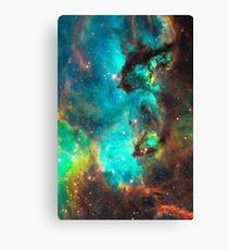 Galaxy / Seahorse / Large Magellanic Cloud / Tarantula Nebula Canvas Print