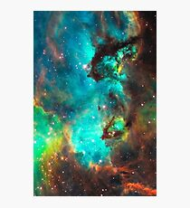 Galaxy / Seahorse / Large Magellanic Cloud / Tarantula Nebula Photographic Print