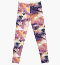 Pomeranian Dog Bright colorful pop dog art Leggings