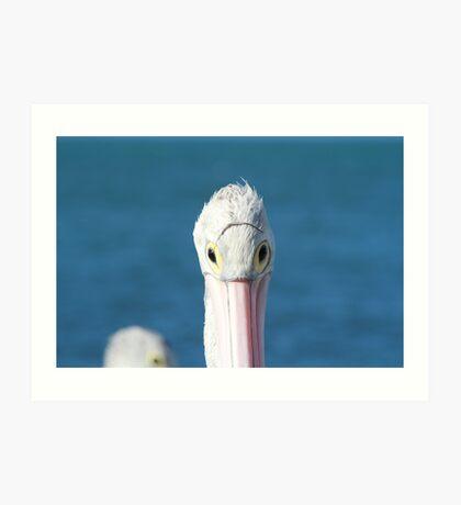 Pelican Eye Wear Art Print