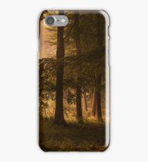 Kingswood iPhone Case/Skin