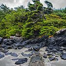 Stormy Weather at McKenzie Beach by toby snelgrove  IPA