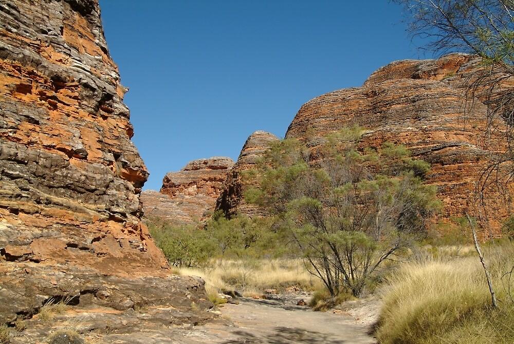 Joe Mortelliti Gallery - Purnululu National Park, or Bungle Bungles domes, Kimberley, Western Australia.  by thisisaustralia