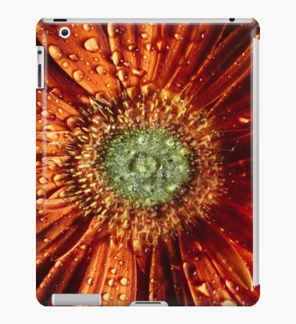 Brewer iPad Case/Skin