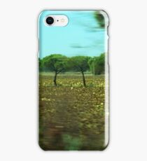 Girasoli con il capo chino iPhone Case/Skin
